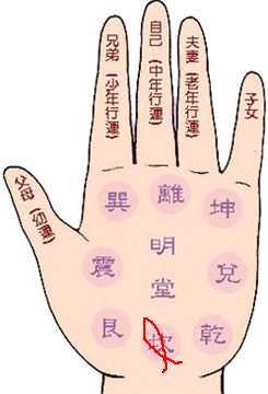 手相算命中预示成功的富贵掌纹——双鱼纹 掌纹算命