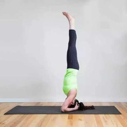 瑜伽的五个基本动作 基本瑜伽动作