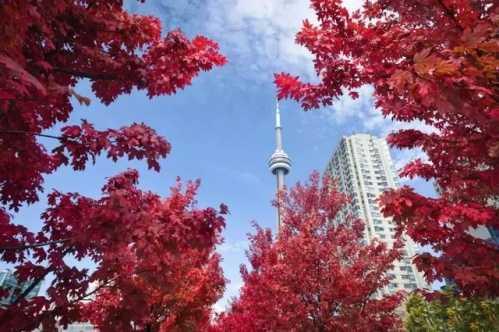 移民加拿大找工作最容易的城市Top10 移民加拿大找会计工作