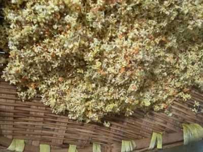 微波炉自制干桂花的做法 桂花干