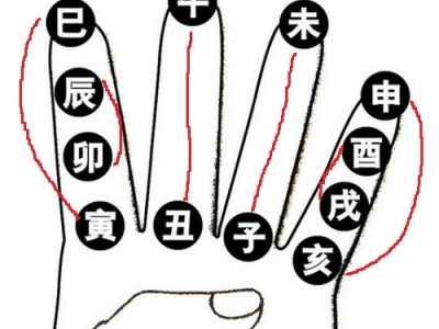易经入门级知识之十二地支总结 易经入门知识
