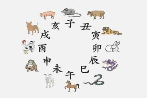 古代皇帝属什么的最多 古代最大的动物是什么