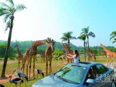 推荐国内几个亲子游的好去处 五一儿童旅游